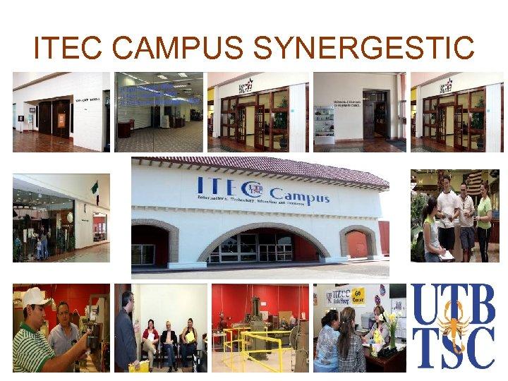 ITEC CAMPUS SYNERGESTIC