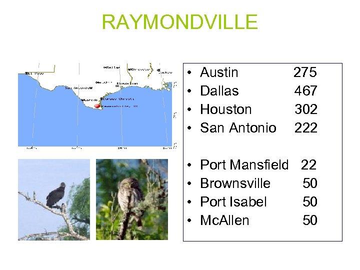 RAYMONDVILLE • • Austin Dallas Houston San Antonio • • Port Mansfield Brownsville Port