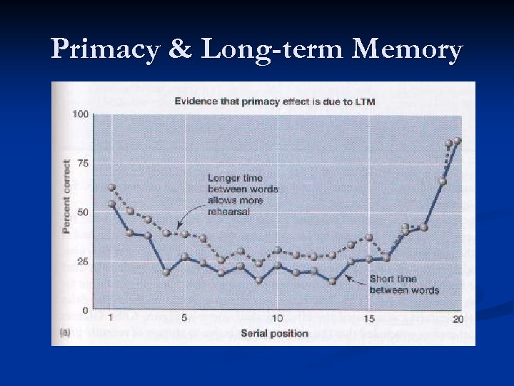 Primacy & Long-term Memory