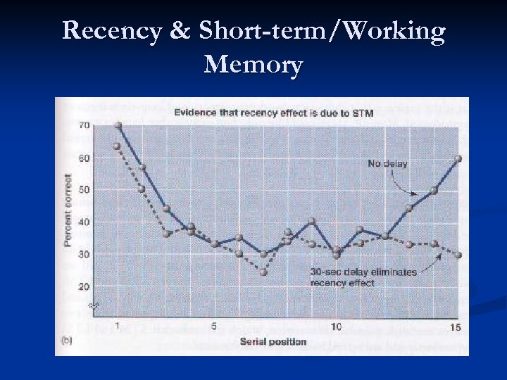 Recency & Short-term/Working Memory