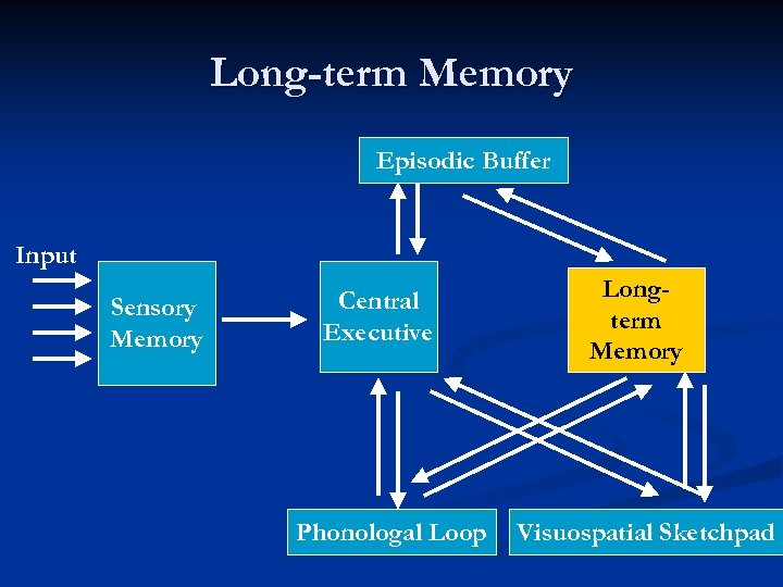 Long-term Memory Episodic Buffer Input Sensory Memory Central Executive Phonologal Loop Longterm Memory Visuospatial