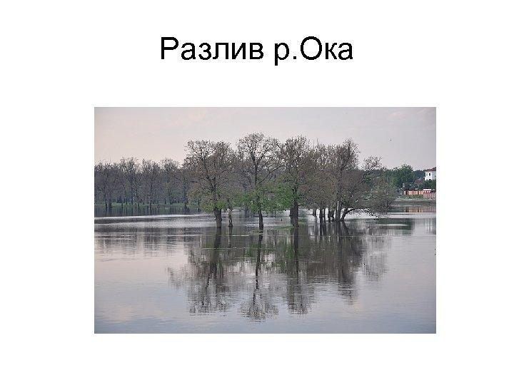 Разлив р. Ока