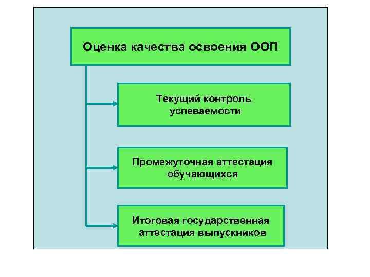 Оценка качества освоения ООП Текущий контроль успеваемости Промежуточная аттестация обучающихся Итоговая государственная аттестация выпускников