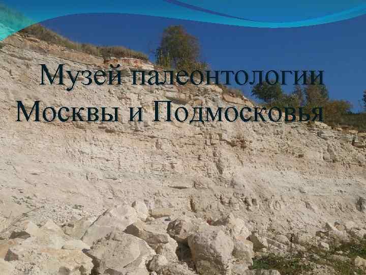 Музей палеонтологии Москвы и Подмосковья