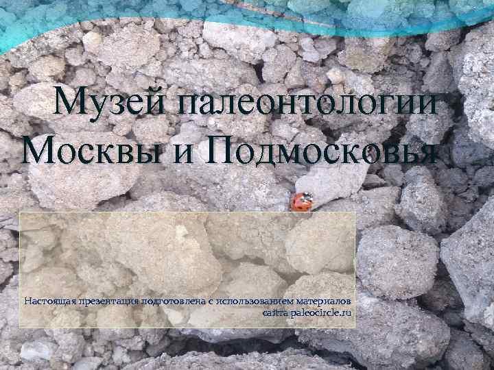 Музей палеонтологии Москвы и Подмосковья Настоящая презентация подготовлена с использованием материалов сайта paleocircle. ru