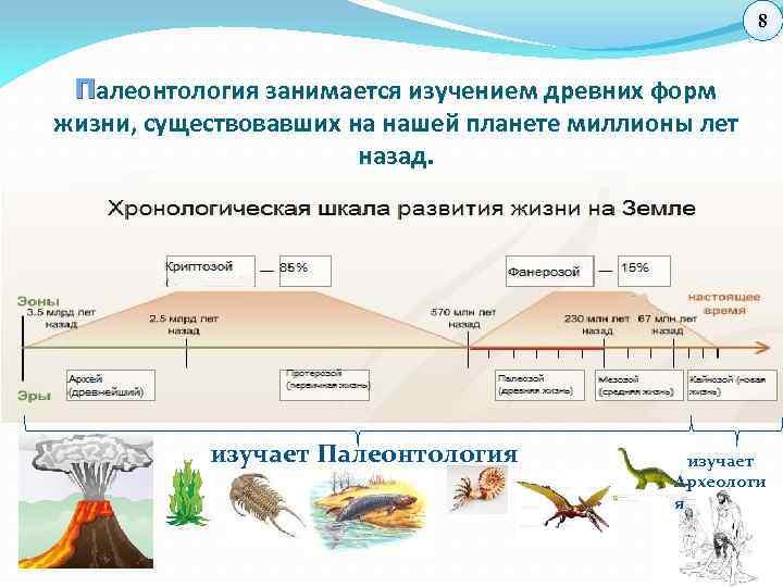 8 П алеонтология занимается изучением древних форм жизни, существовавших на нашей планете миллионы лет