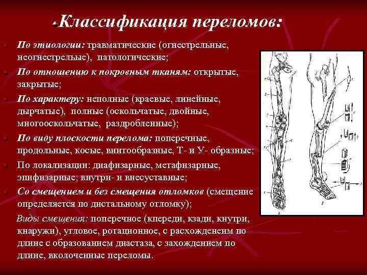 Классификация переломов: По этиологии: травматические (огнестрельные, неогнестрельые), патологические; По отношению к покровным тканям: открытые,