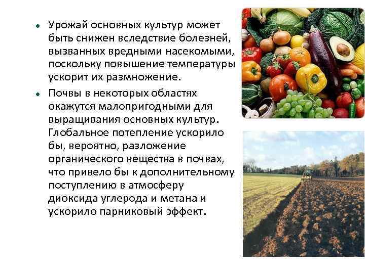 Урожай основных культур может быть снижен вследствие болезней, вызванных вредными насекомыми, поскольку повышение