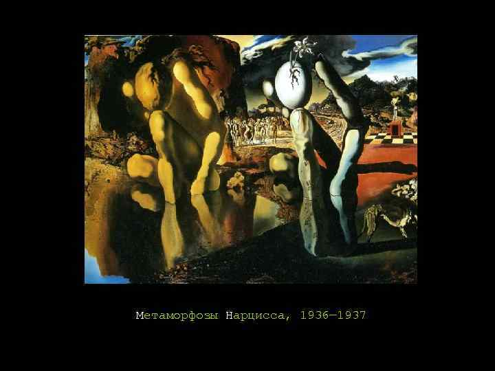 metamorphosis of narcissus salvador dali The metamorphosis of the myth takes place at that precise moment, for the image of narcissus is suddenly transformed into the image of a hand which rises out of his own reflection at the tips of its fingers the hand is holding an egg, a seed, a bulb from which will be born the new narcissus – the flower.