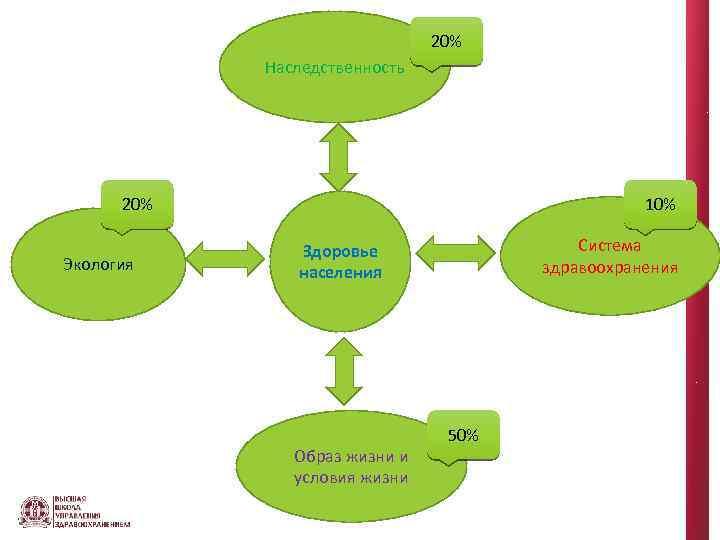 20% Наследственность 20% Экология 10% Система здравоохранения Здоровье населения Образ жизни и условия жизни