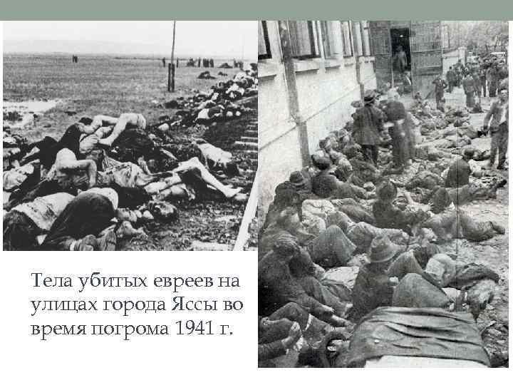 Тела убитых евреев на улицах города Яссы во время погрома 1941 г.