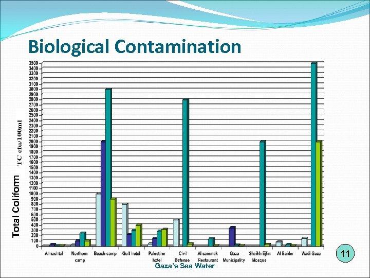 Total Coliform Biological Contamination 11 Gaza's Sea Water