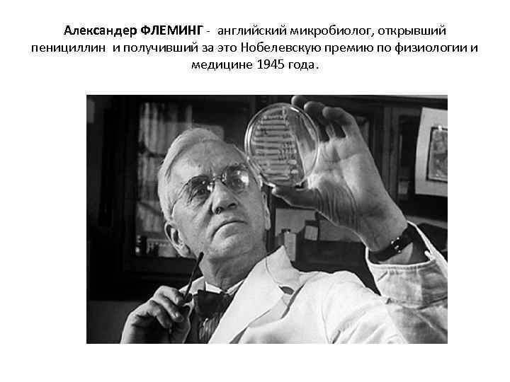 Александер ФЛЕМИНГ - английский микробиолог, открывший пенициллин и получивший за это Нобелевскую премию по