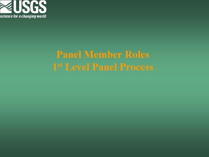 Panel Member Roles 1 st Level Panel Process
