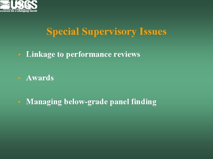 Special Supervisory Issues • Linkage to performance reviews • Awards • Managing below-grade panel
