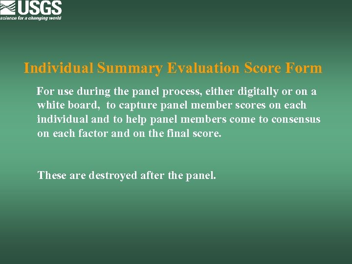 Individual Summary Evaluation Score Form For use during the panel process, either digitally or