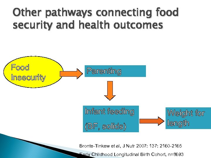 Other pathways connecting food security and health outcomes Food Insecurity Parenting Depression Infant feeding