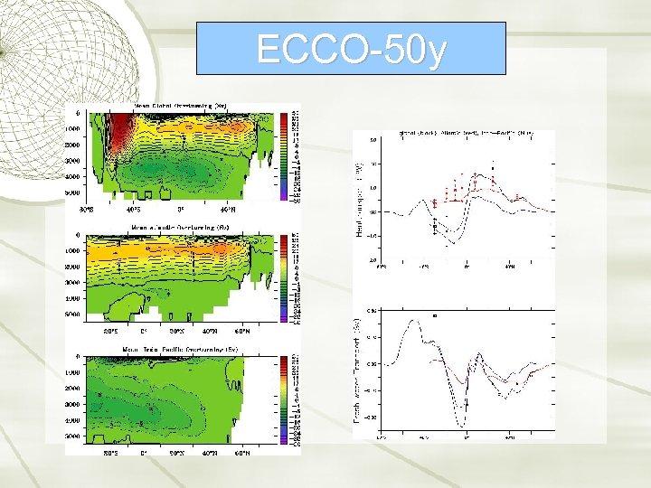 ECCO-50 y