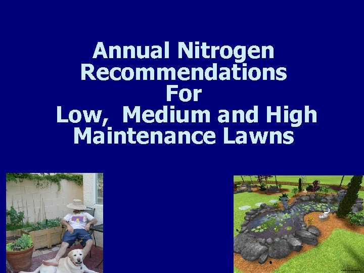 Annual Nitrogen Recommendations For Low, Medium and High Maintenance Lawns