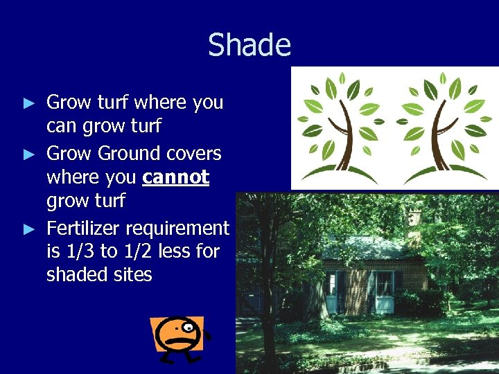 Shade Grow turf where you can grow turf ► Grow Ground covers where you