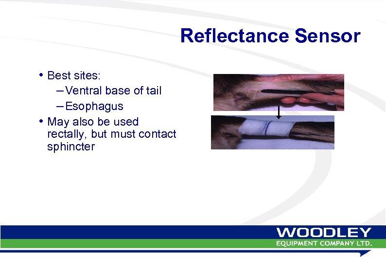 Reflectance Sensor • Best sites: – Ventral base of tail – Esophagus • May