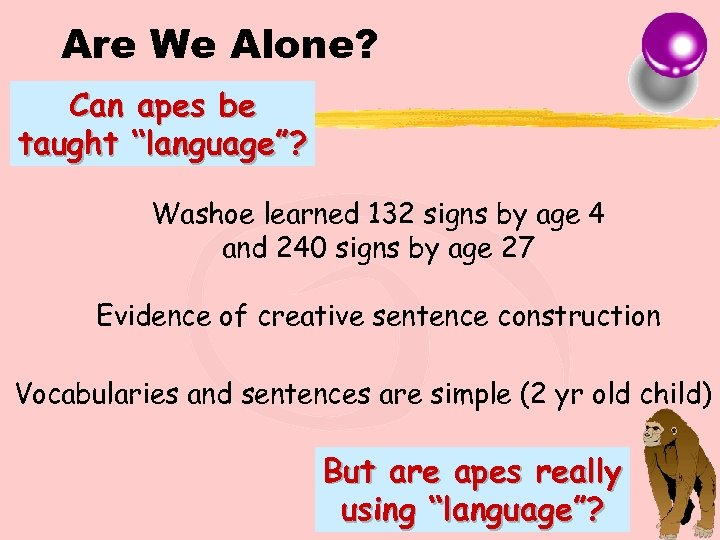 "Are We Alone? Can apes be taught ""language""? Washoe learned 132 signs by age"