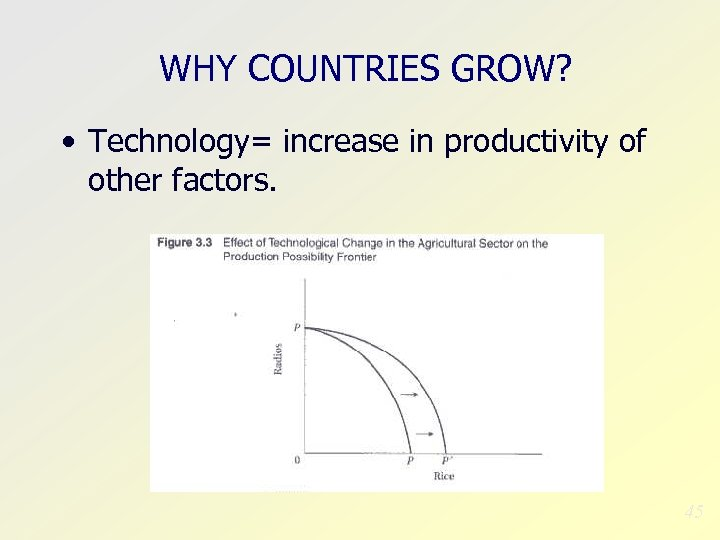 WHY COUNTRIES GROW? • Technology= increase in productivity of other factors. 45