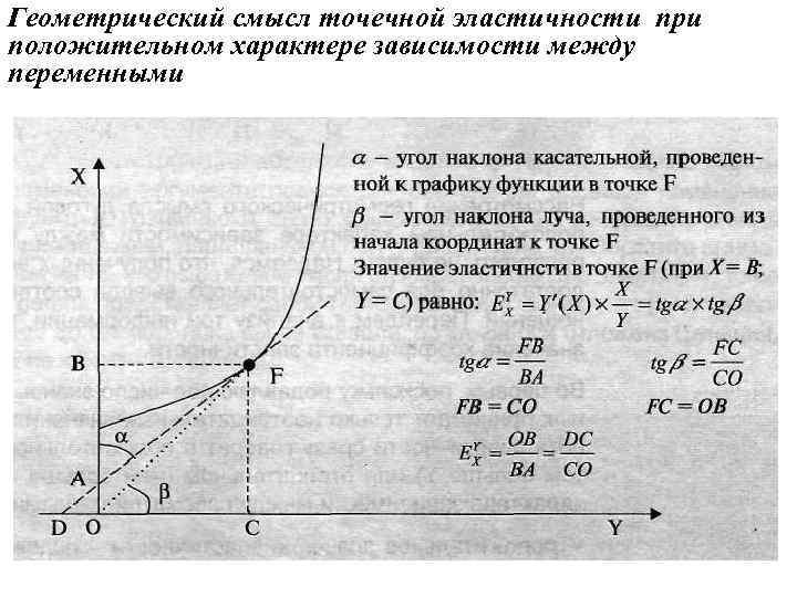 Геометрический смысл точечной эластичности при положительном характере зависимости между переменными