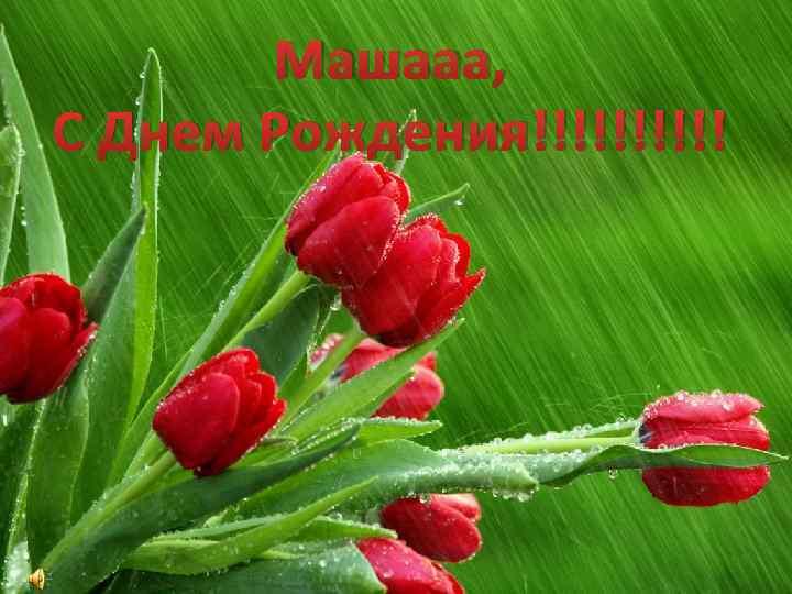 Машааа, С Днем Рождения!!!!!