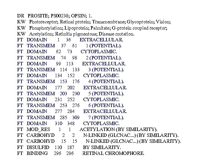 DR PROSITE; PS 00238; OPSIN; 1. KW Photoreceptor; Retinal protein; Transmembrane; Glycoprotein; Vision; KW