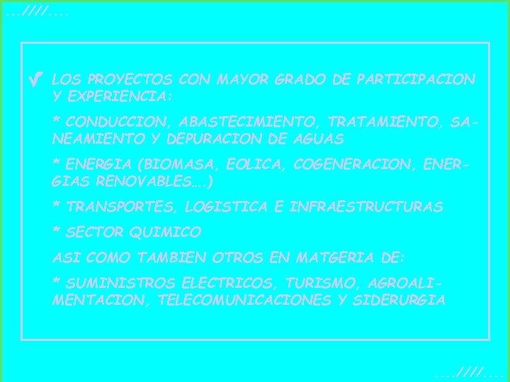 . . . ////. . LOS PROYECTOS CON MAYOR GRADO DE PARTICIPACION Y EXPERIENCIA: