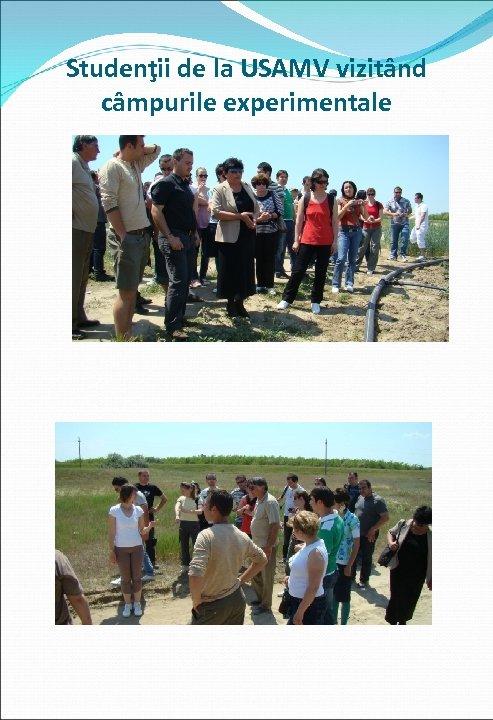 Studenţii de la USAMV vizitând câmpurile experimentale