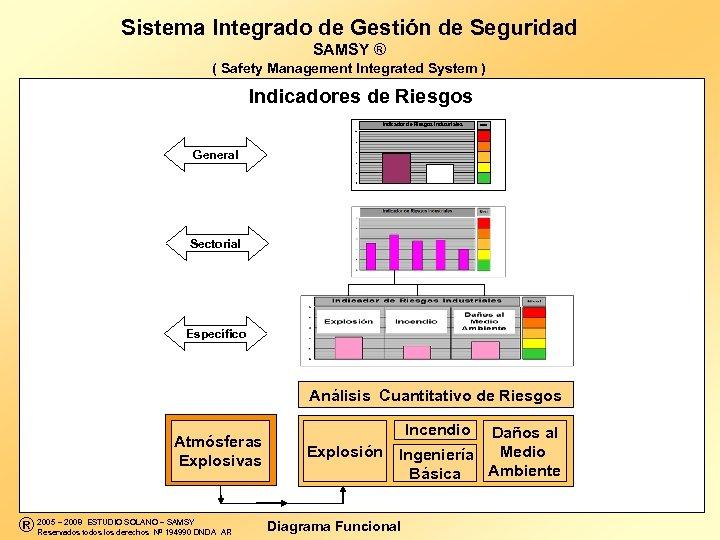 Sistema Integrado de Gestión de Seguridad SAMSY ® ( Safety Management Integrated System )