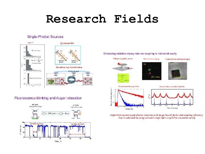 Research Fields
