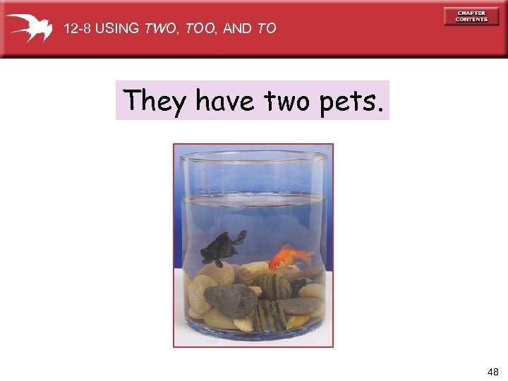 12 -8 USING TWO, TOO, AND TO They have two pets. 48