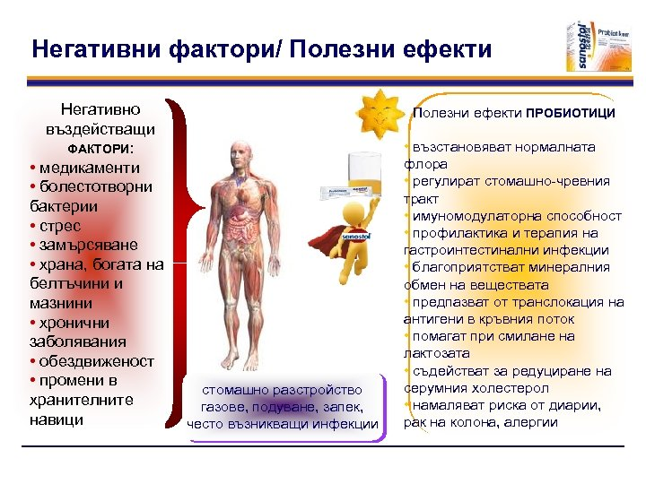 Негативни фактори/ Полезни ефекти Негативно въздействащи ФАКТОРИ: • медикаменти • болестотворни бактерии • стрес