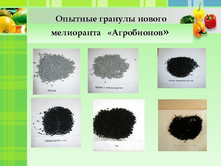 Опытные гранулы нового мелиоранта «Агробионов»