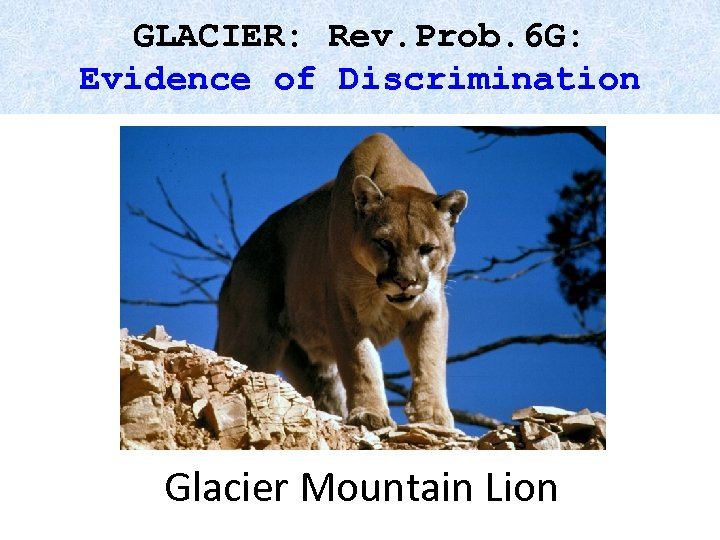 GLACIER: Rev. Prob. 6 G: Evidence of Discrimination Glacier Mountain Lion