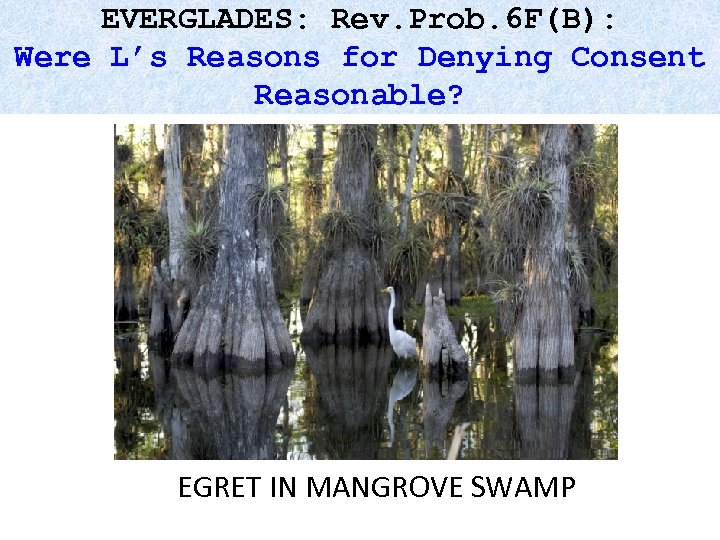 EVERGLADES: Rev. Prob. 6 F(B): Were L's Reasons for Denying Consent Reasonable? EGRET IN