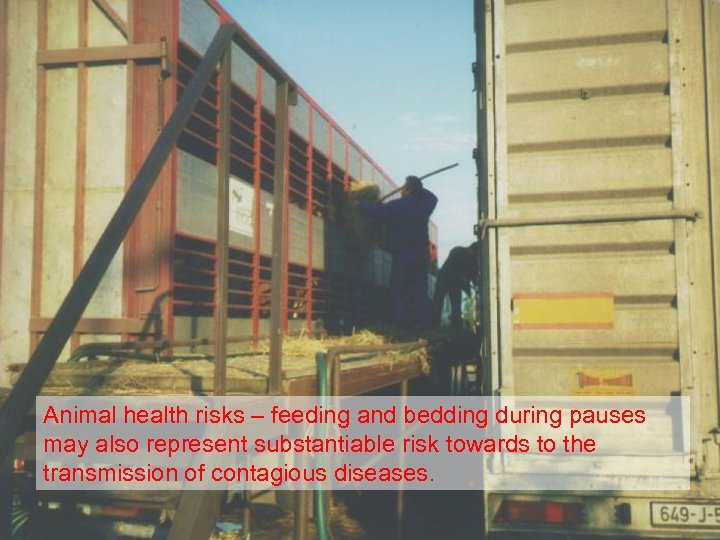 Animal health risks – feeding and bedding during pauses may also represent substantiable risk