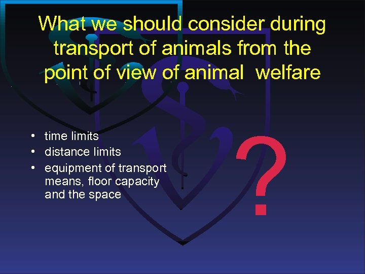 What we should consider during transport of animals from the point of view of