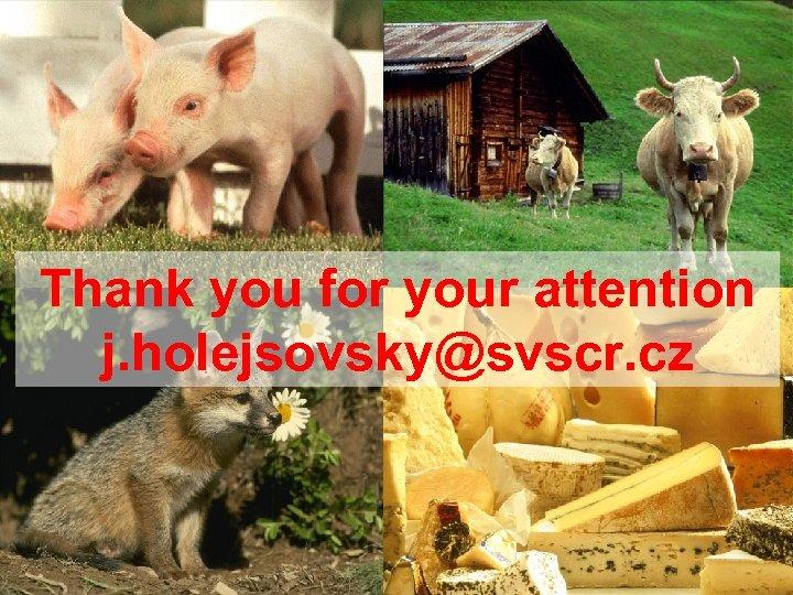 Thank you for your attention j. holejsovsky@svscr. cz