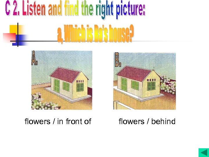 flowers / in front of flowers / behind