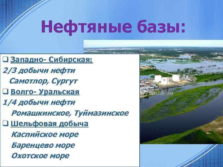 Нефтяные базы: q Западно- Сибирская: 2/3 добычи нефти Самотлор, Сургут q Волго- Уральская 1/4