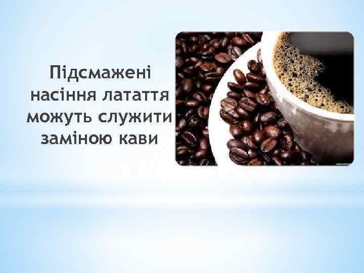 Підсмажені насіння латаття можуть служити заміною кави