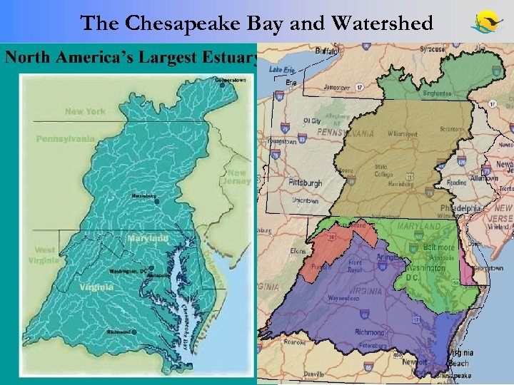 The Chesapeake Bay and Watershed