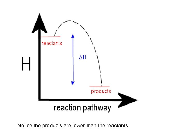 Notice the products are lower than the reactants