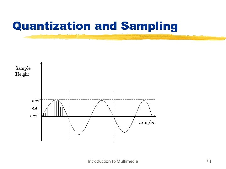 Quantization and Sampling Sample Height 0. 75 0. 25 samples Introduction to Multimedia 74