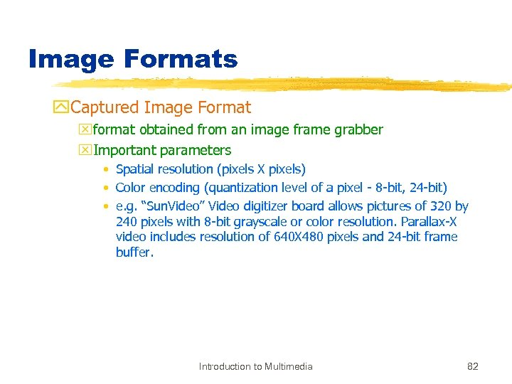 Image Formats y. Captured Image Format xformat obtained from an image frame grabber x.