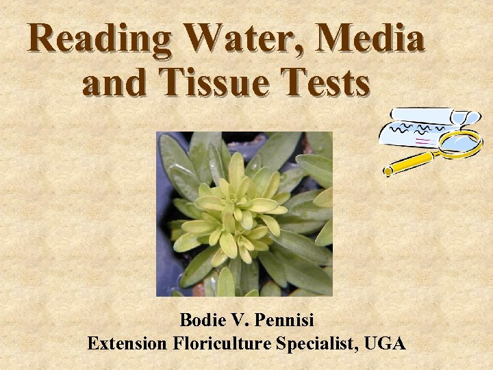 Reading Water, Media and Tissue Tests Bodie V. Pennisi Extension Floriculture Specialist, UGA